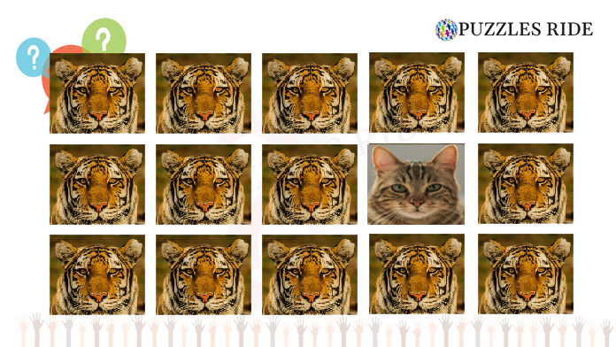 find-the-catr-kids-puzzle