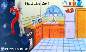 can you find the rat puzzle